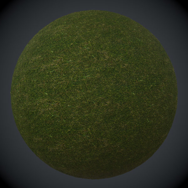 mossy-ground1-preview