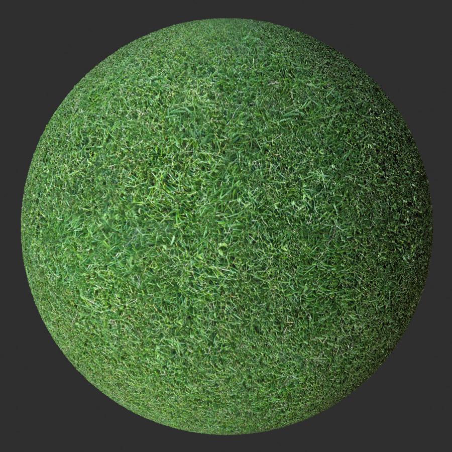 Grass #1 PBR Material