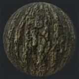 Old Tree Bark PBR Material