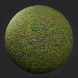 Mossy Mixed Ground PBR Material