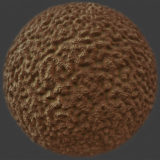 Coral 1 PBR Material