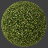 Leafy Grass 2 PBR Material