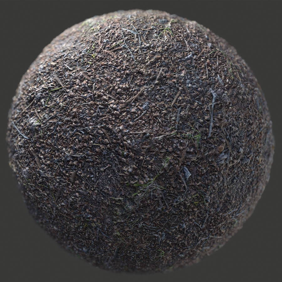 Pine Forest Ground PBR Material