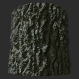 Mature Oak Tree Bark PBR Material